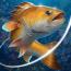 دانلود Fishing Hook 2.0.6 – بازی پرطرفدار قلاب ماهیگیری + مود